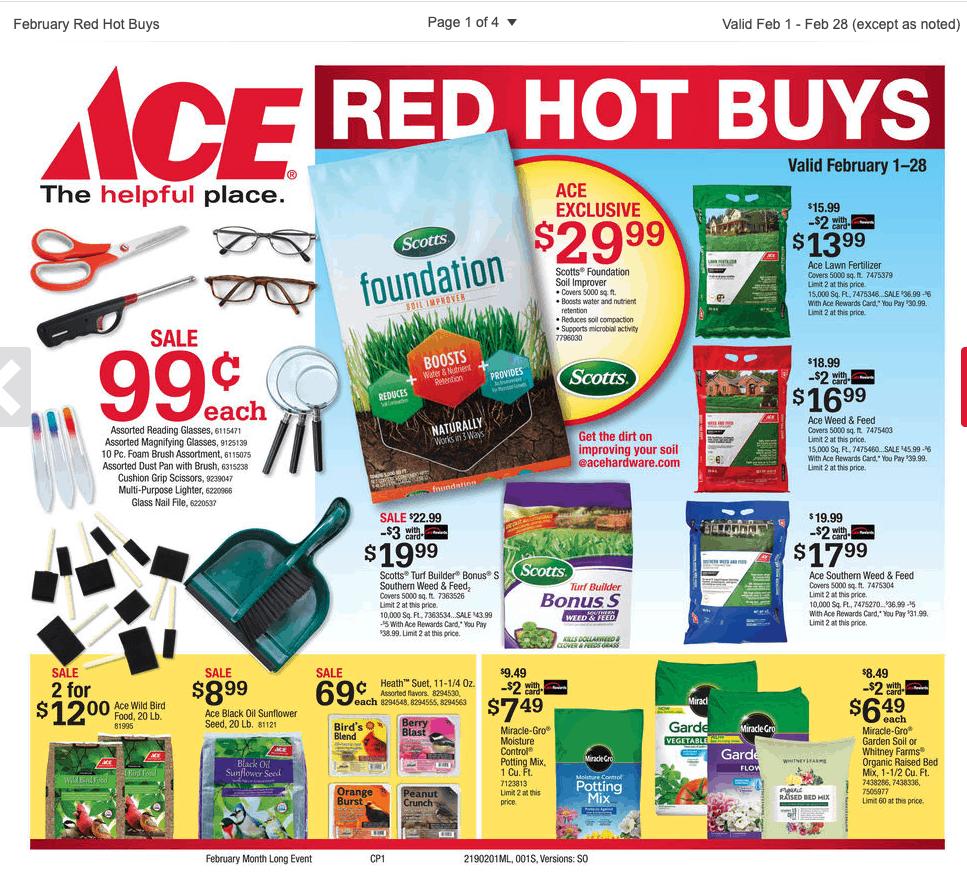 Ace Hardware Sales February 2019